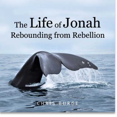 Rebounding_From_Rebellion_by_Chris_Burge-Teaching-Series-CBMI-Reach_Your_Divine_Potential-chrisburgeministries