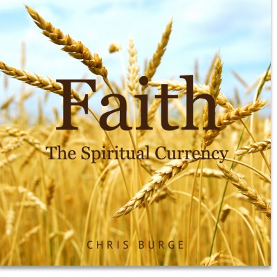 Faith_By_Chris_Burge-Teaching-Series-CBMI-Reach_Your_Divine_Potential-chrisburgeministries