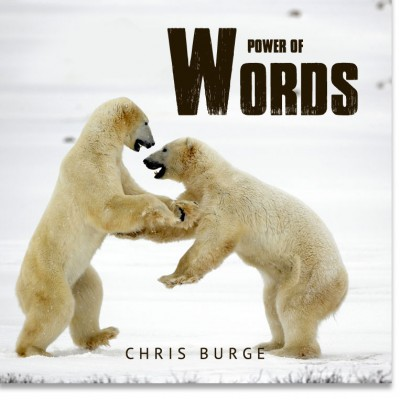 The_Power_Words_By_Chris_Burge-Teaching-Series-CBMI-Reach_Your_Divine_Potential-chrisburgeministries