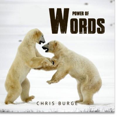 The_Power_Words_By_Chris_Burge-Teaching-Series-CBMI-Reach_Your_Divine_Potential-chrisburgeministries