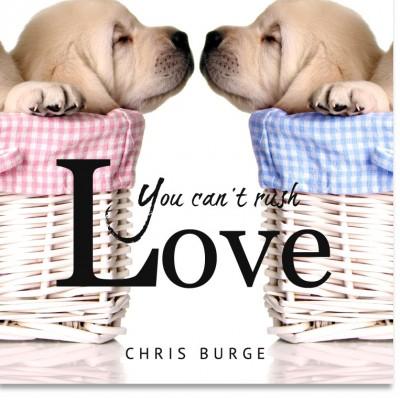 You_Can't_Rush_Love_By_Chris_Burge-Teaching-Series-CBMI-Reach_Your_Divine_Potential-chrisburgeministries