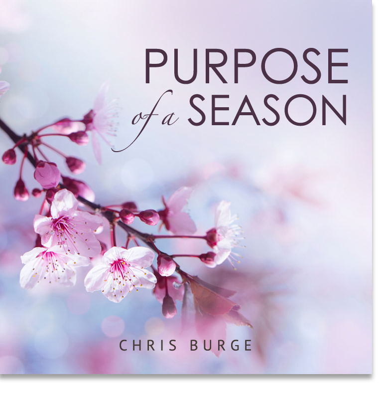 Discerning_Season_Chris_Burge-Teaching-Series-CBMI-Reach_Your_Divine_Potential-chrisburgeministries