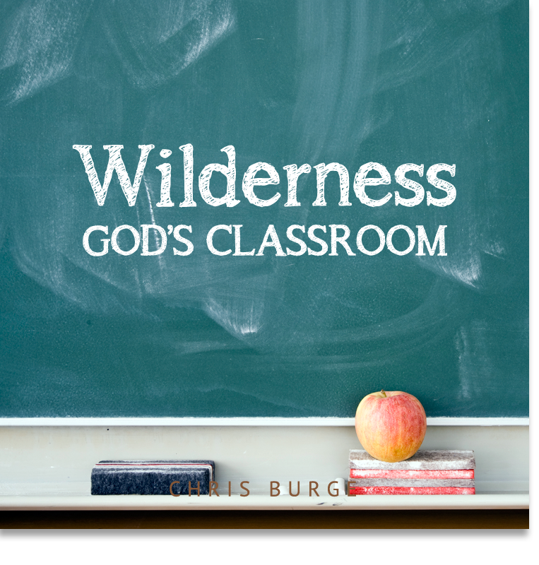 Wilderness_By_Chris_Burge-Teaching-Series-CBMI-Reach_Your_Divine_Potential-chrisburgeministries