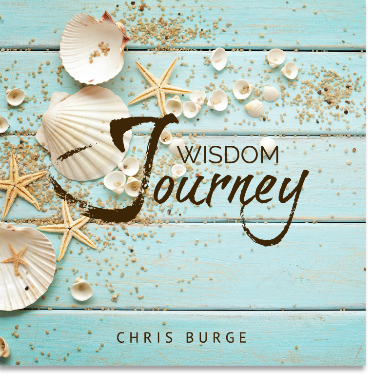 Wisdom_Journey_By_Chris_Burge-Teaching-Series-CBMI-Reach_Your_Divine_Potential-chrisburgeministries