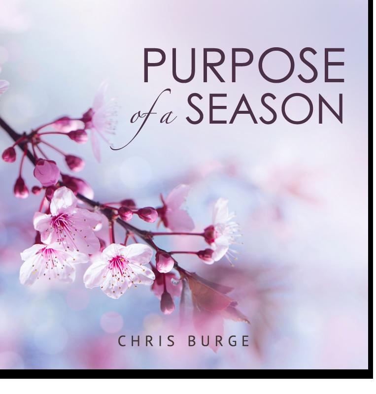 Discerning_Season_Chris_Burge-Teaching-Series-CBMI-Reach_Your_Divine_Potential-chrisburgeministries