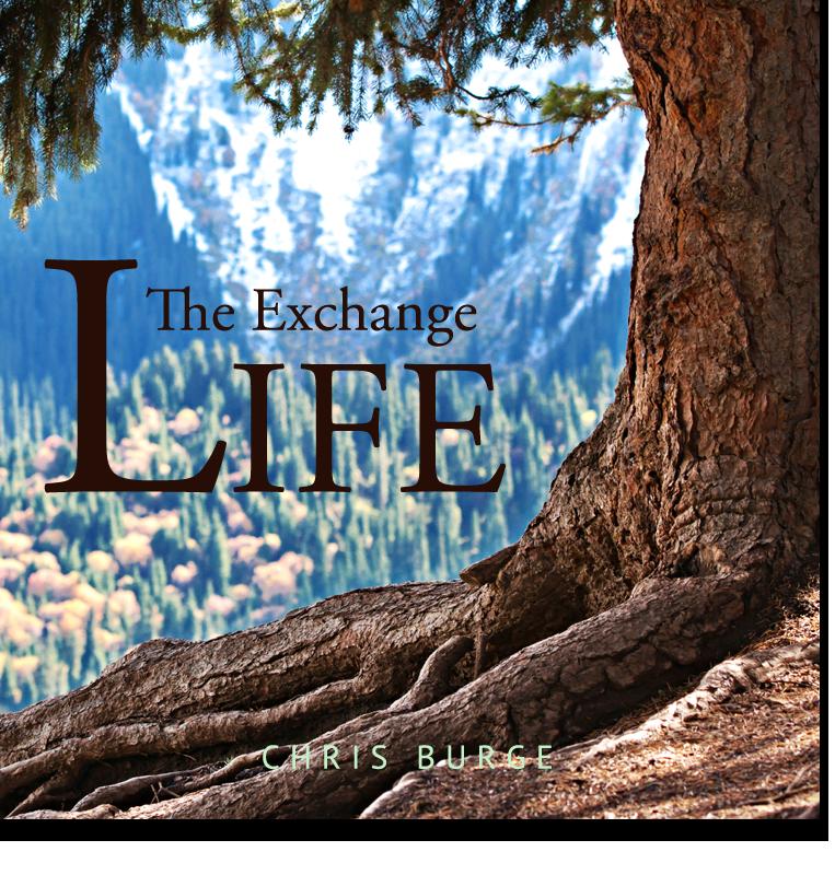 Exchange_Life_Chris_Burge-Teaching-Series-CBMI-Reach_Your_Divine_Potential-chrisburgeministries
