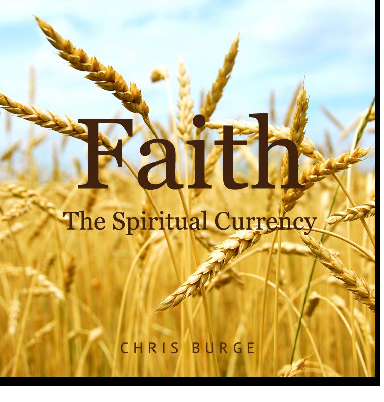 Faith_By_Chris_Burge-Teaching-Series-CBMI-Reach_Your_Divine_Potential-chrisburgeministries